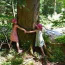 Dia da Proteção das Florestas